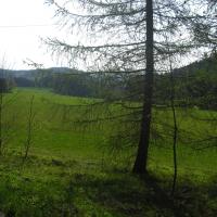 Griesbach (Ostern 2011) - 009