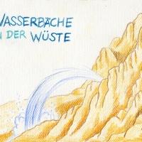 Wasserbaeche_Wueste