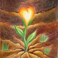 Liebe_pflanzen