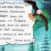 GoldeneHochzeit_AdlerFliegen