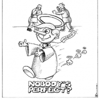 nobody_is_perfect