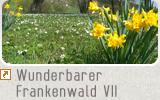 Wunderbarer Frankenwald VII