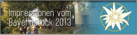 Bayernstock 2013